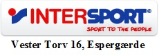 Logo Intersport Esp